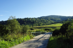 Dolina Wetliny - za mostem tereny dawnej wsi Łuh